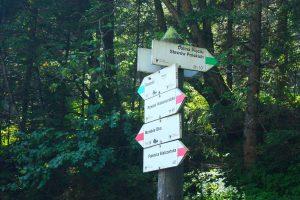 05-img_5820-sendero-verde-dolina-pieciu-lagos-tras-el-swiniza-2-p
