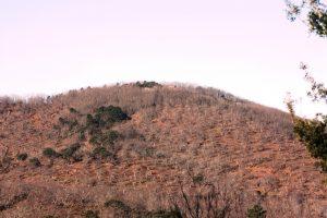 foto-45-IMG_8859-cerro-castaño-p