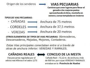 030-vias-pecuarias-del-power